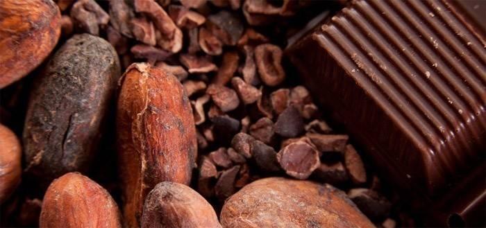 Шоколадна дієта на 7 днів, відгуки про результати, фото до і після