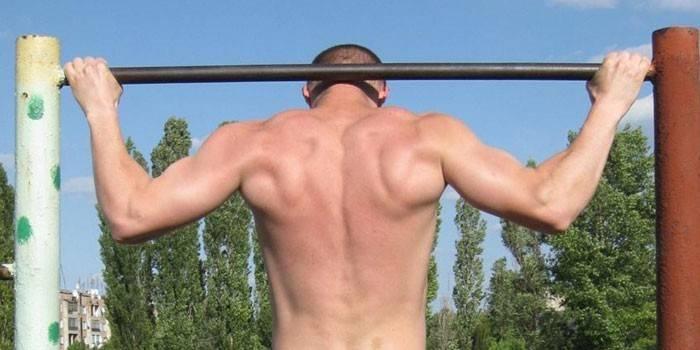 Які м'язи працюють при підтягуванні широким, вузьким, зворотним і паралельним хватом на турніку