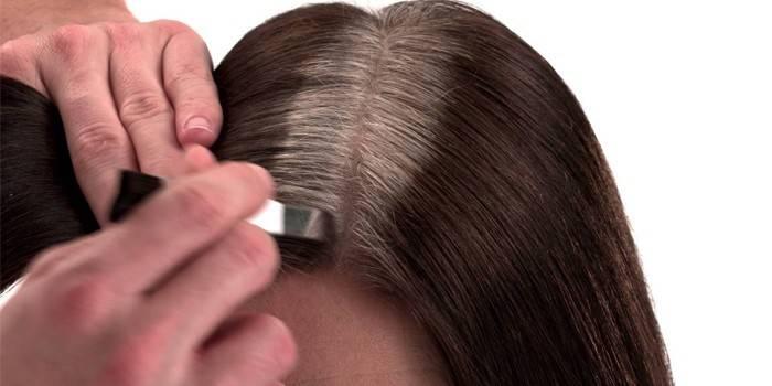 Чим зафарбувати сивину на темному волоссі в домашніх умовах