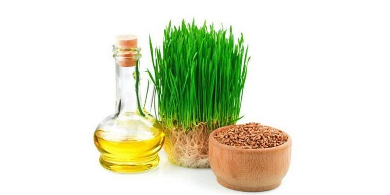 Масло зародків пшениці для волосся - як використати проти лупи і посічених кінчиків