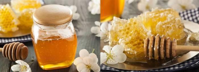 Мед для волосся домашні рецепти масок для осветеления і зміцнення