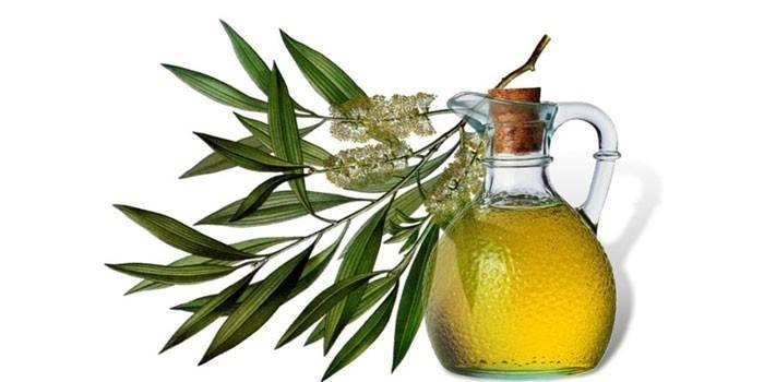 Масло чайного дерева для особи - механізм дії на шкіру і правила використання