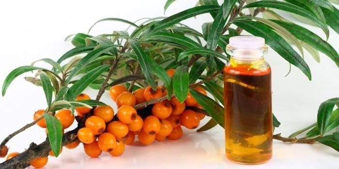 Обліпихова масло для брів - корисні властивості і правила використання