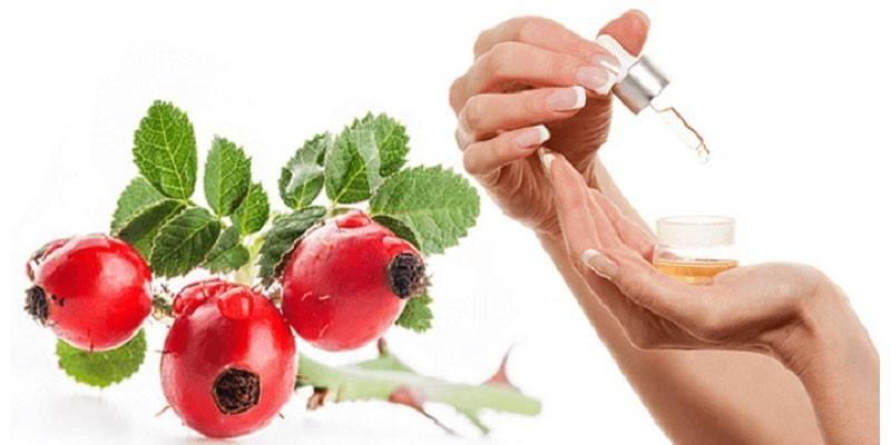 Масло шипшини для обличчя: як використовувати, властивості для шкіри
