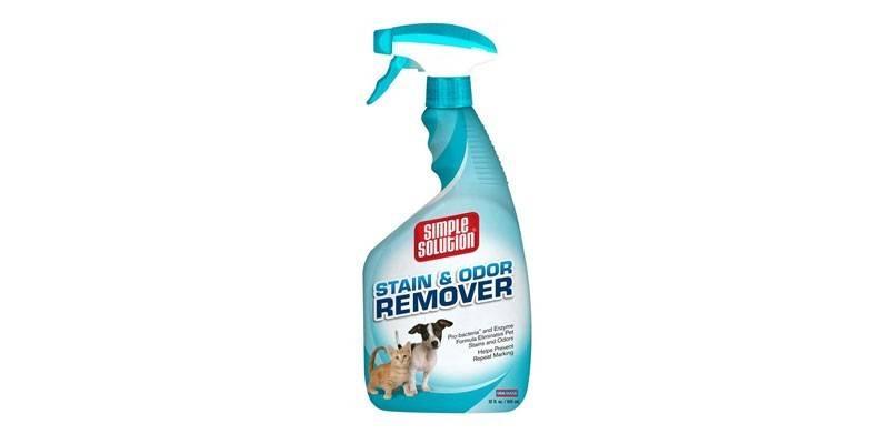 Як прибрати запах котячої сечі з дивана - кращі способи для видалення запаху