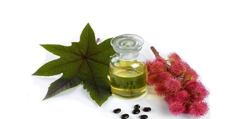 Рицинова олія для очищення кишечника: як пити