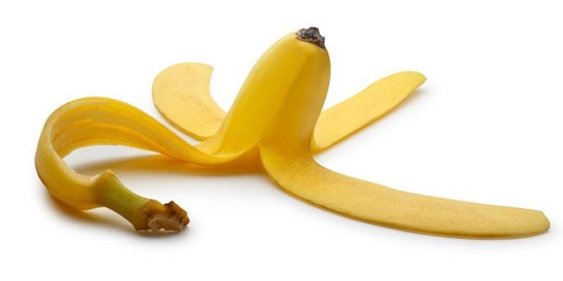 Бананова шкірка як добриво: як зробити і використовувати, відгуки