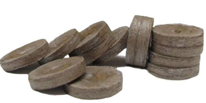 Торф'яні таблетки - як правильно підготувати і використовувати, посадка насіння