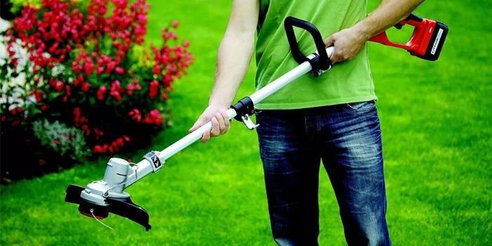 Рейтинг бензинових і електричних тримерів для трави