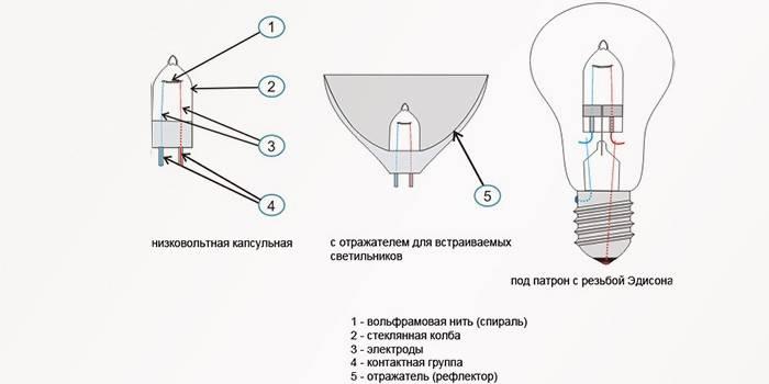 Галогенні лампи - огляд для люстр та бра, переваги і термін служби