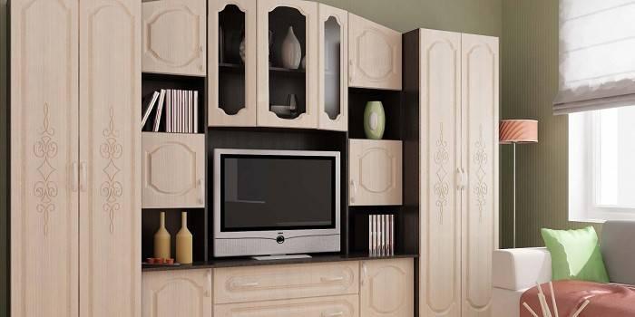 Стінка в вітальню - рейтинг найбільш якісних виробів за матеріалом виготовлення, ціни і комплектації