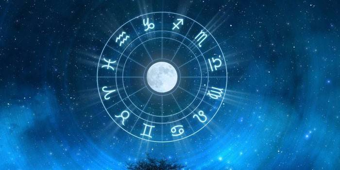 Місячний календар для кімнатних рослин, особливості догляду за квітами