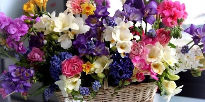 Складання букетів з живих квітів - дизайн і техніка оформлення минибукета, як складати красиву незвичайну композицію