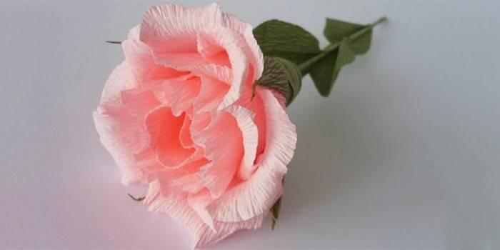 Квіти з гофрованого паперу своїми руками: покроковий майстер-клас