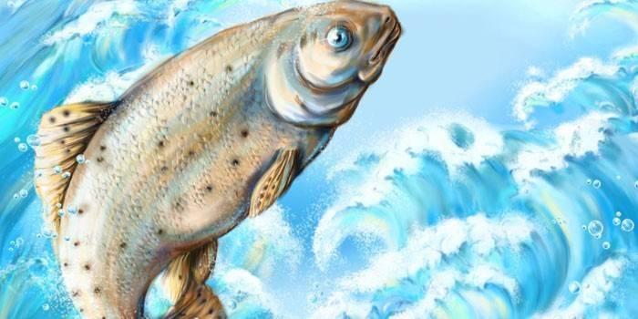 До чого сниться риба жінці - значення по соннику
