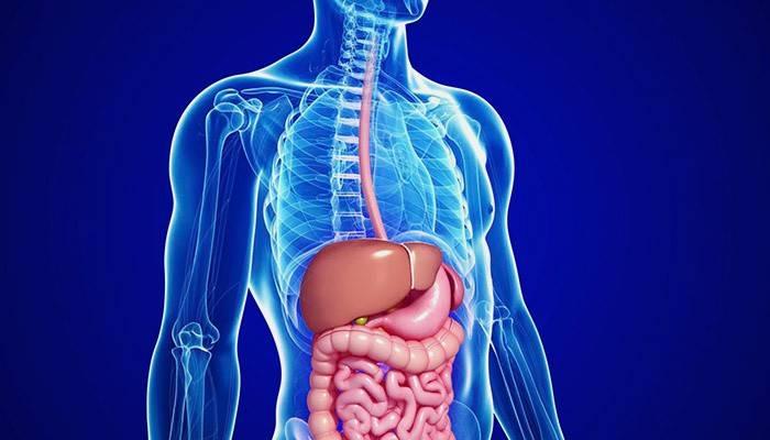 Дифузні зміни печінки - діагноз і лікування