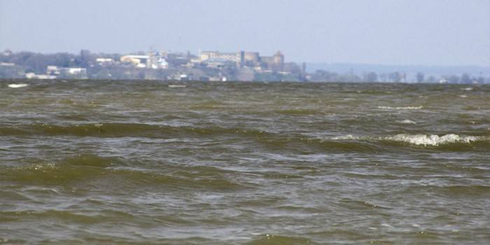 Що таке естуарій - це воронкоподібне гирло річки, що розширюється у бік моря