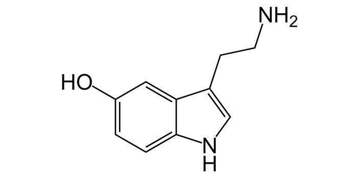 Серотонін - формула, дія на організм людини, в яких продуктах і препаратах міститься