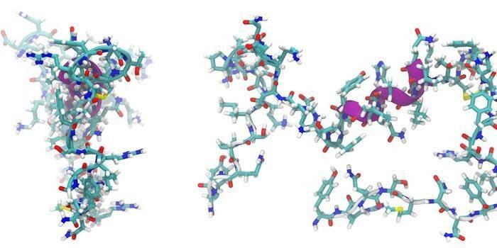 Пептиди - що це таке і їх норма в аналізі крові, застосування в косметології та медичних препаратах