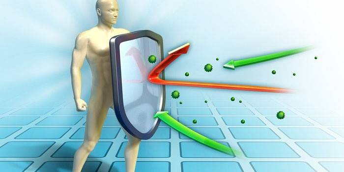 Що таке пасивний імунітет і як формується