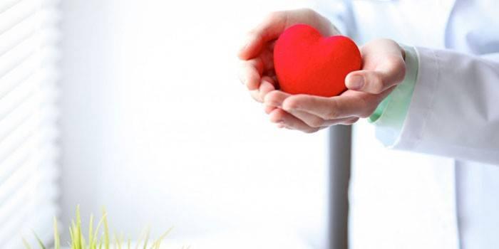 Часта шлуночкова екстрасистолія: класифікація, симптоми і дігностіка порушення ритму серця