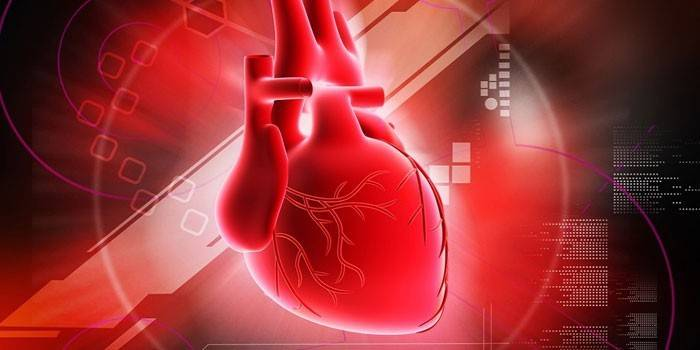 Гіпертрофія міокарда - причини і симптоми, лікування кардіоміопатії народними засобами