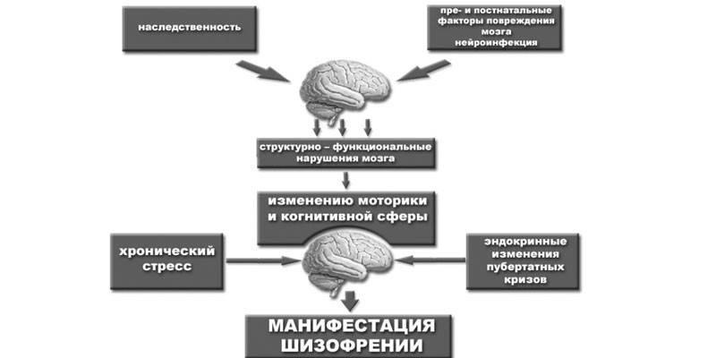 Шизофренія - симптоми і прояви хвороби на різних стадіях, способи терапії і можливі ускладнення