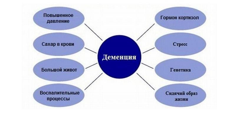 Судинна деменція - ознаки, форми і прояви хвороби, медикаментозна терапія, прогноз