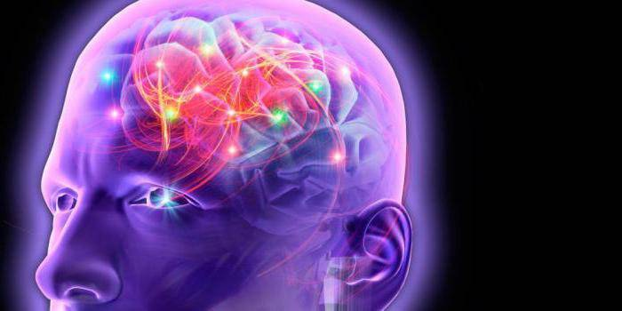 Болюсы Хуато - як приймати ноотропний препарат, механізм дії, протипоказання та відгуки