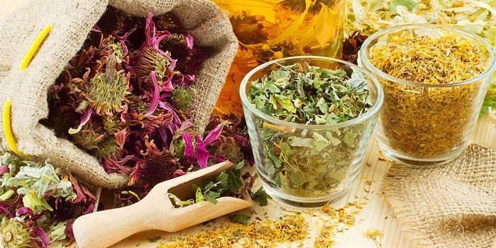 Трави від простатиту - найбільш ефективні для лікування та профілактики, рецепти зборів, відварів і чаїв