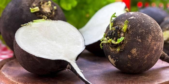 Чорна редька - корисні властивості і шкоду, рецепти приготування від кашлю з медом і протипоказання