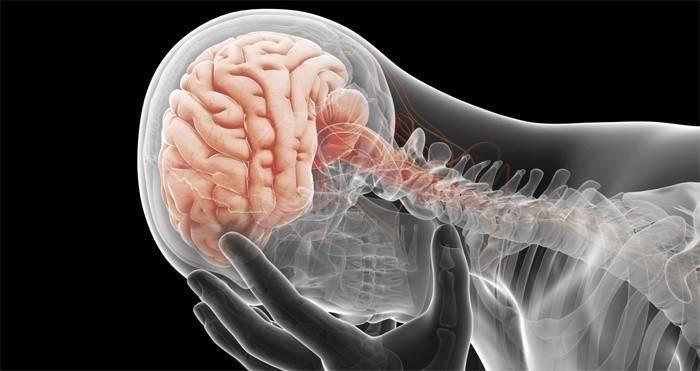 Симптоми раку мозку - ознаки хвороби на ранніх стадіях у дорослих і дітей