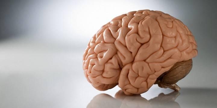 Ознаки пухлини головного мозку на ранніх стадіях у дорослих і дітей