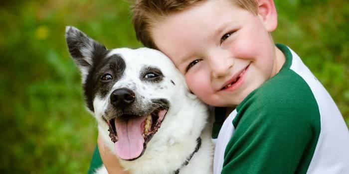 Токсокари у дітей: симптоми і лікування захворювання у дітей і дорослих