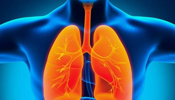 Лікування пневмонії у дорослого в домашніх умовах: народні засоби і антибіотики