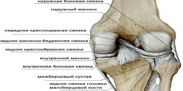Меніск колінного суглоба - симптоми при розриві і лікування пошкоджень, операція при травмі і реабілітація