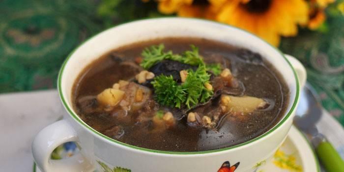 Суп грибний з свіжих грибів: приготування смачної страви
