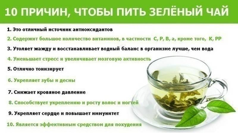 10 переваг жасминового зеленого чаю: користь і властивості
