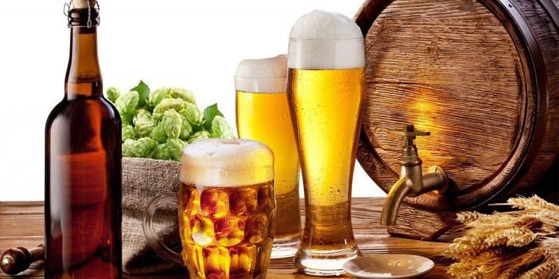 Як зробити пиво з хмелю та солоду - обладнання і технологія пивоваренья з відео