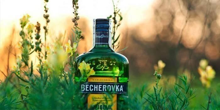 Бехерівка - види і корисні властивості напою, як правильно і з чим пити
