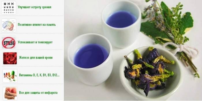 Синій чай тайська - способи заварки, застосування при схудненні, склад і смакові якості