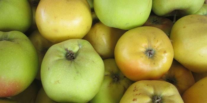 Вино з яблук - прості рецепти приготування