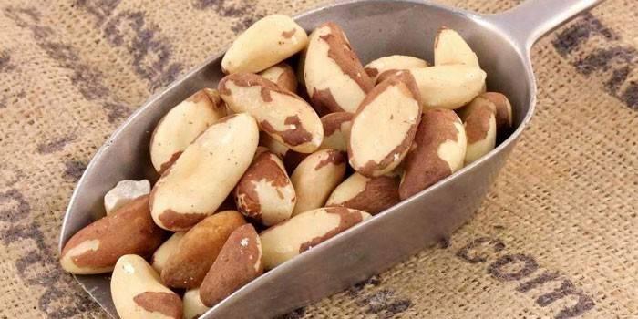 Бразильський горіх: корисні властивості плодів та протипоказання