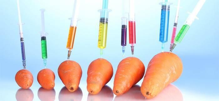 Генномодифіковані продукти - вплив на людину