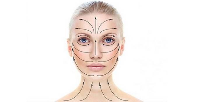 Масажні лінії обличчя: як наносити крем на шкіру, напрямок рухів з фото