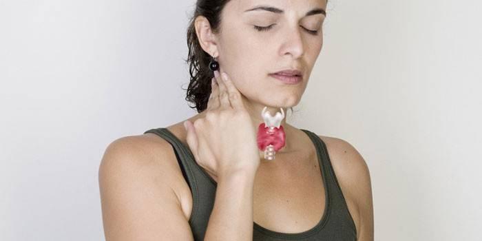 Як схуднути при гіпотиреозі щитовидної залози швидко